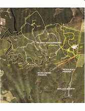 Photo: Aerial photo of The Great Satilla Preserve. We can email you a PDF version so that you can see the road system and lot numbers of the development and the location of Blue Landing Preserve and it's common areas.