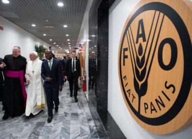 Đức Thánh Cha với IFAD: 'Ước mong rằng chúng ta được nhìn thấy sự thất bại hoàn toàn của nạn đói & một mùa vụ bội thu của công bình & thịnh vượng
