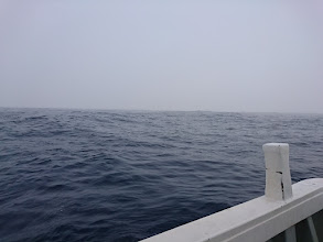 Photo: ・・・霧はまだ晴れません。