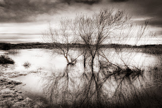 Photo: Riverside Mood 05