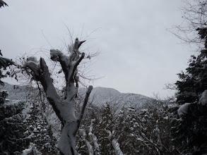 後ろに景色(鎌倉山)