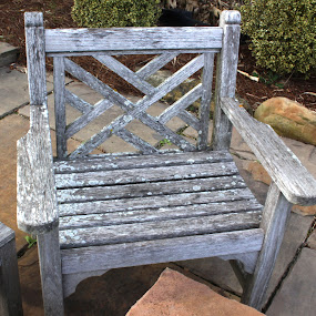 Aged with Care by Lynn Morley - City,  Street & Park  Neighborhoods ( love, pwcbenches, stone, aged, weathered )