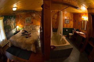 Photo: Birch Room