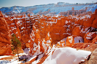 Photo: Closing the Bryce canyon chapter with this one. Hopefully, you get the idea. Wonderful place to hike and shoot, especially during the winter, when there's snow. Go check out the place by yourself if you have a chance.  Tony Mignot at gimpytripod.blogspot.com