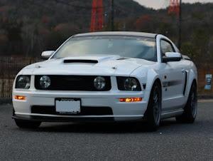 マスタング クーペ  GT カリフォルニアスペシャルのカスタム事例画像 さとさんの2020年12月18日18:01の投稿