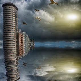 Vlissingen,the netherlands by Egon Zitter - Digital Art Places ( reflection, tower, seagul, appartments, flat, vlissingen )