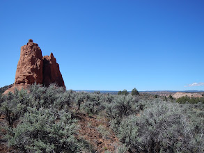 Photo: Sage and rock