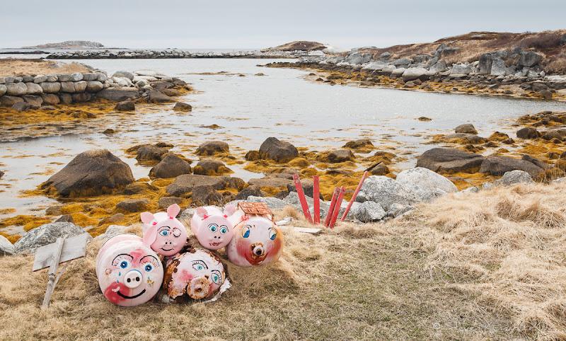 Photo: Piggy Buoys