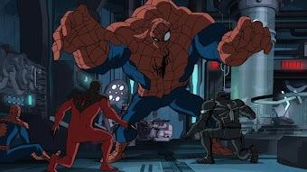 Spider Slayers - Part 3