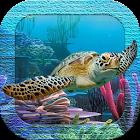 3D Sea Turtles Live Wallpaper icon