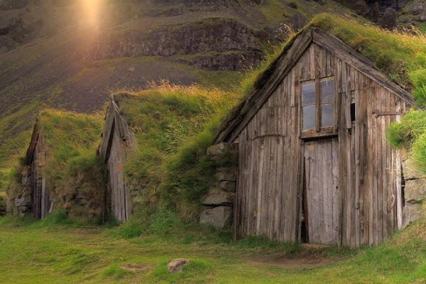 Skogar houses di cen77