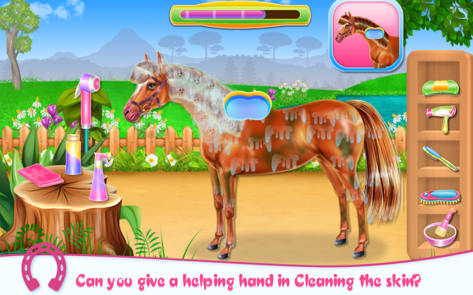Horse Care and Riding- screenshot