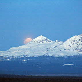 Moon Set by Moe Cook - Landscapes Mountains & Hills ( oregon, mountains, moonset, snow, snowy volcano, moonlight )