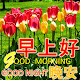 Chinese Good Morning Noon Good Night Love apk