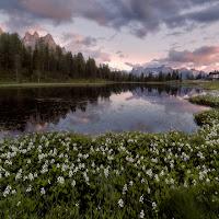 Primavera al lago d'Antorno di