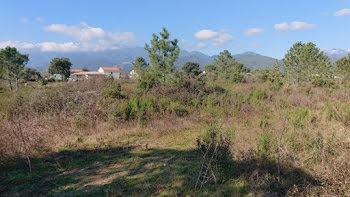 terrain à Ghisonaccia (2B)