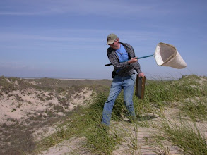 Photo: Sweeping (and sifting) on South Padre Island