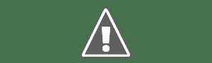 Consulta il programma