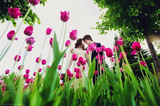 Wedding photographer Elena Zayceva (Zaychikovna). Photo of 24.05.2016