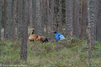 Photo: Azlan har funnet Jan Ståle og koser seg med pipeballer!