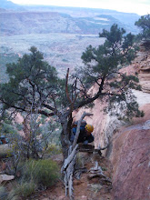 Photo: Ed Forkos on the approach of Moqui Peak