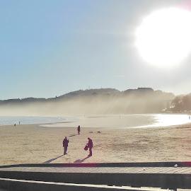 Misty sunny beach  by Eloise Rawling - Landscapes Beaches ( misty day, sun light, seaside, seascape, beach, misty,  )