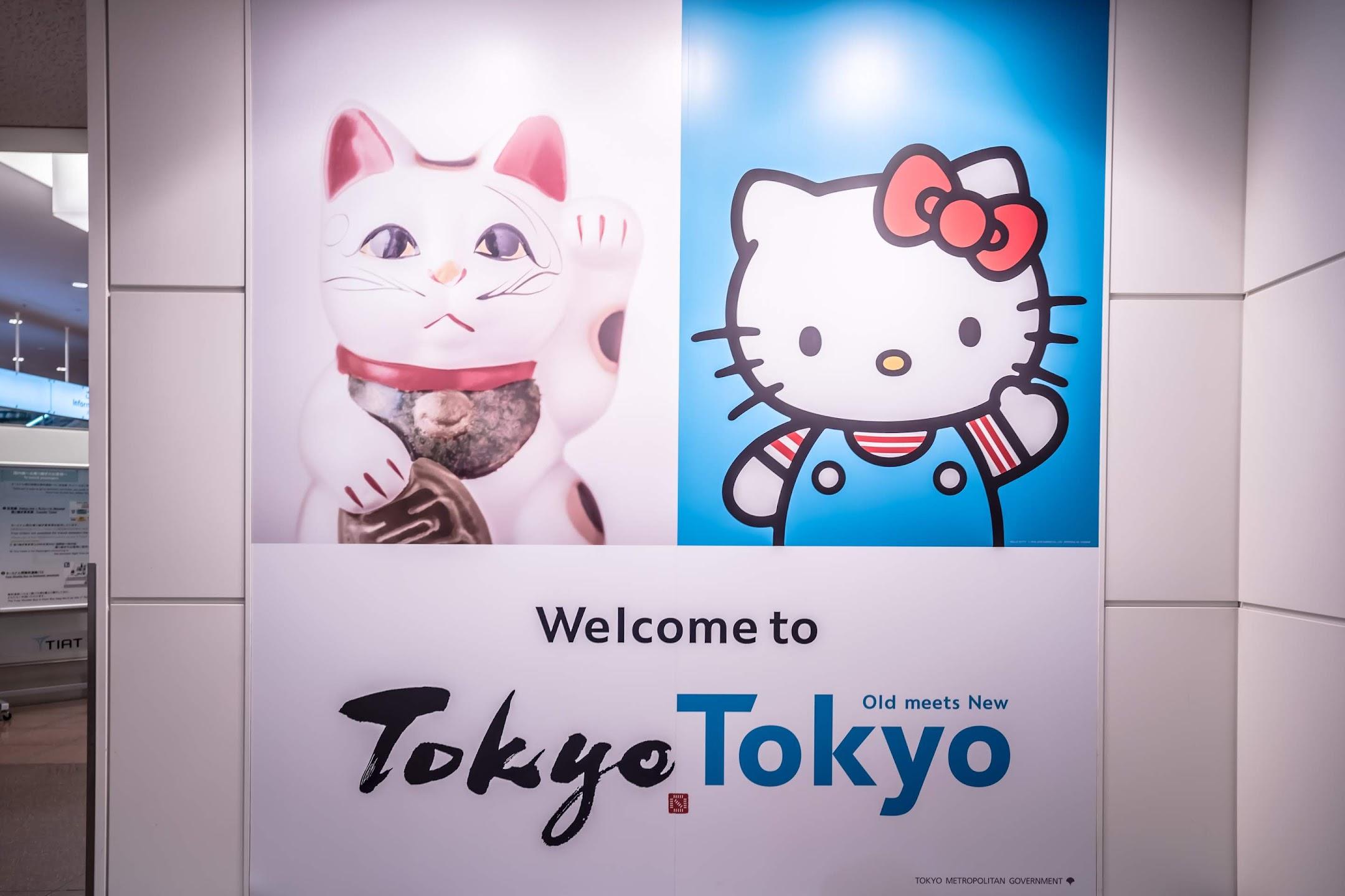 羽田空港 国際線2