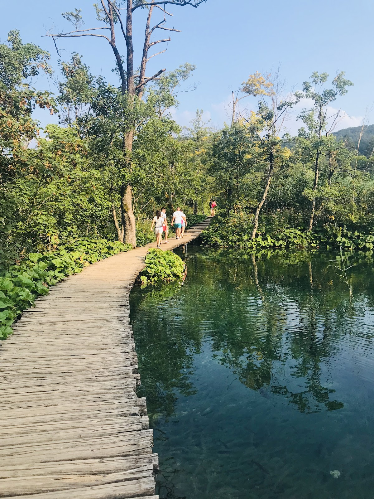 plitvice lakes national park, small wooden path with tourists on top of lakes and green forest. Natural beauty in Croatia.