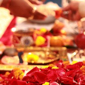 Wedding ceremony by Anurag Bhateja - Wedding Ceremony ( rose, wedding, pooja, india, ceremony, flowers )