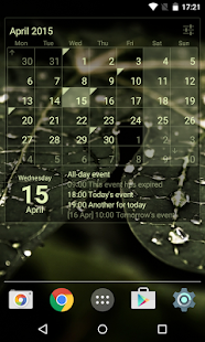Calendar Widget Month + Agenda Screenshot