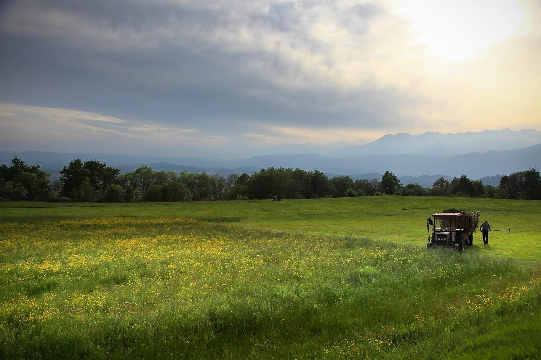 Agricoltura in Italia