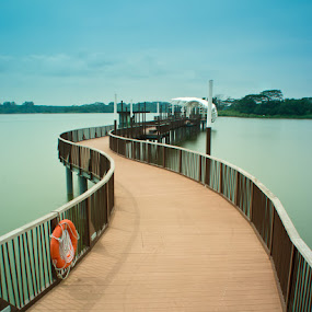 S-Curve Bridge to Pod by Chester Chen - Buildings & Architecture Bridges & Suspended Structures ( reservoir, lower, seletar, bridge, singapore )