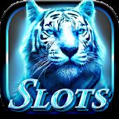 Slots Super Tiger Casino Slots