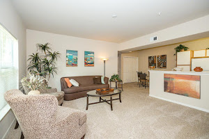 Willow Lakes Apartments For Rent In Port Arthur Texas