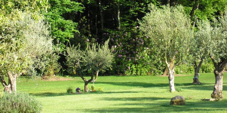 jardins de la m moire en bretagne un cimeti re hors normes o chacun dort sous son arbre. Black Bedroom Furniture Sets. Home Design Ideas