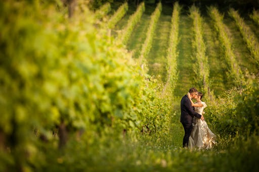 Wedding photographer Nicola Tanzella (tanzella). Photo of 30.05.2016