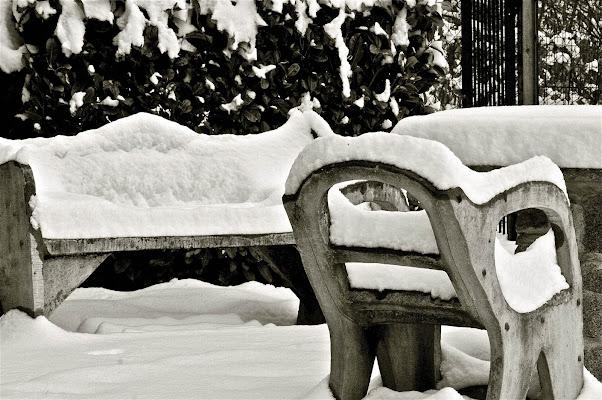 Sedia vuota, fredda, silenziosa. di Nicolas Bernardi Imagine