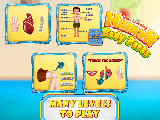 Kids human body parts learning game apk 100 download only apk kids human body parts learning game ccuart Images