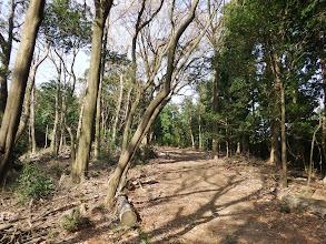 京ヶ峯への道を進む