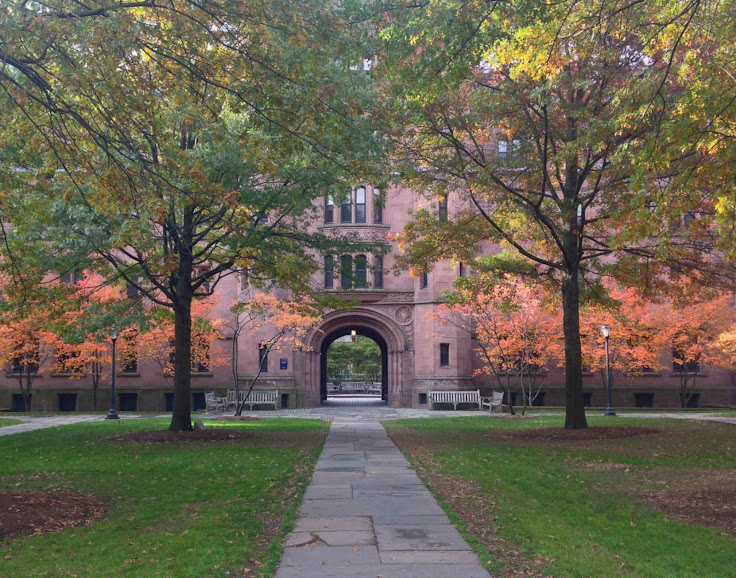 Vanderbilt Hall in the Autumn. Photo: Mark Alden Branch.