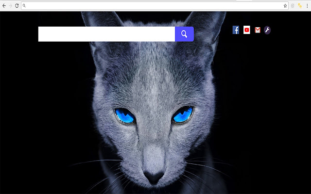 Cats Dogs Wallpaper Full Hd Themes Chrome Web Store