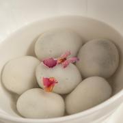 Tang Yuan in Clear Soup