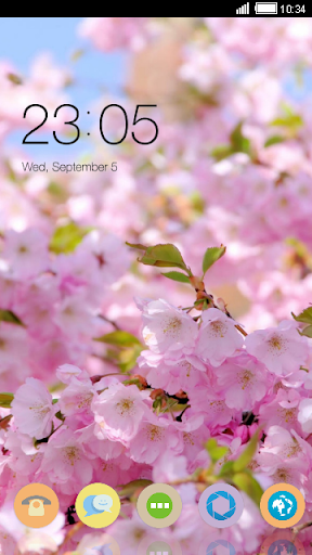 Delicate Pink Blossoms Theme