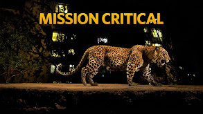 Mission Critical thumbnail