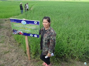 Photo: Mrs.PrakayMarya, Naklam village, Namkai sub district, Nam Pad district, Uttaradit province