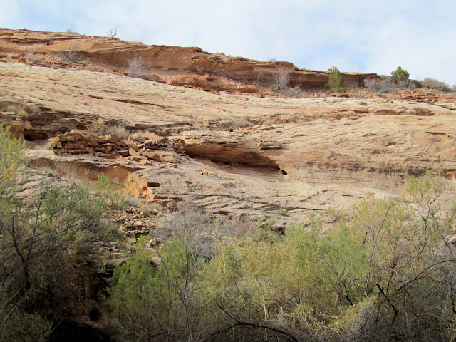 Trail near Keg Spring