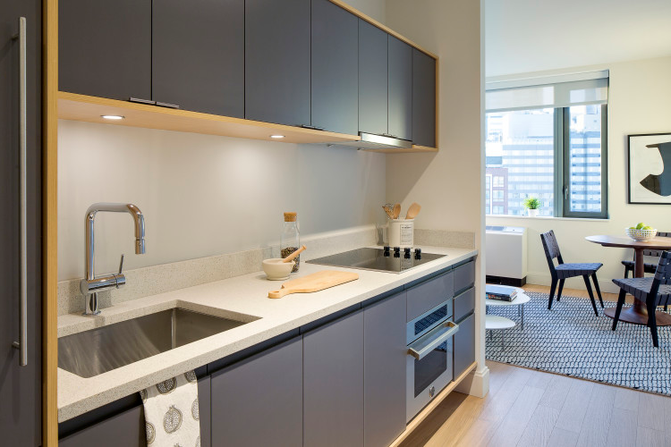 Equipped Kitchen at 1 Bedroom Luxury Apartment in Brooklyn