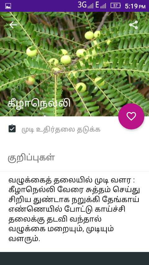 Hair Fall Control Tips Tamil The Indian Apps