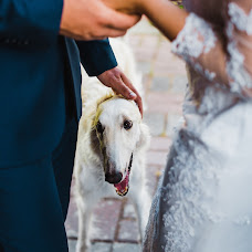 Wedding photographer Anastasiya Soloveva (solovijovaa). Photo of 04.10.2017