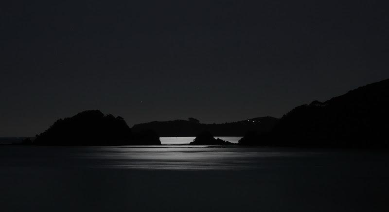 Paihia bay in the moonlight di utente cancellato